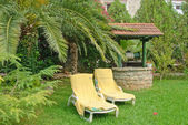 Two longue chairs in garden — Stock Photo