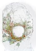 Frozen wreath — Stock Photo