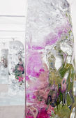 The ice blocks with alive flowers — Stock fotografie