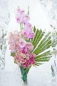 Frozen orchid bouquet — Foto de Stock