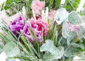 Frozen flower composition — Stock Photo