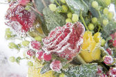 Frozen bouquet of dark-red roses — ストック写真