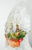 Frozen bouquet 2 — Stock Photo