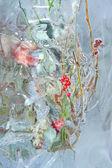 Frozen bouquet with berries — Foto de Stock