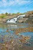 River on the Horton Plains, Sri Lanka — Stock Photo