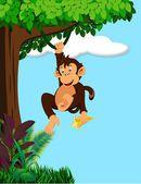 Monkey cartoon — Stock Vector