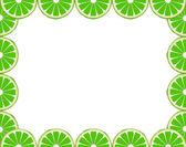 Lime frame — Stock Vector