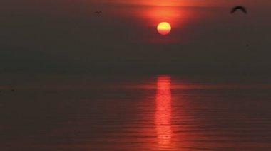 Puesta de sol sobre el lago — Vídeo de stock