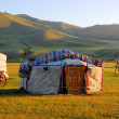 yurt in mongolia — Stock Photo
