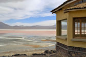 Laguna Colorada in Bolivia — Stock Photo