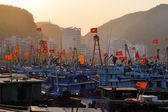 Vietnamese Fishing Boats in Harbor — Foto de Stock