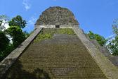 Maya Tempel Nr. 5 in Tikal, guatemala — Stockfoto