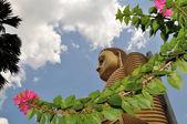 Golden Buddha of Dambulla, Sri Lanka. — Stock Photo