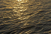 Gold sea — Stockfoto