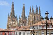 Catedral de burgos. españa. — Foto de Stock