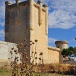Castle. Torrelobaton. Spain. — Stock Photo