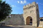 Medieval gateway. Portillo. Spain. — Stock fotografie