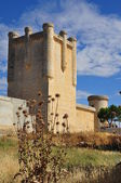 Castle. Torrelobaton. Spain. — Stock Photo