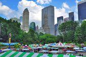 Central Park.. New York. USA. — Stock Photo