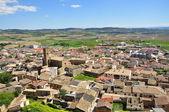 Artajona. Navarre. Spain. — Foto Stock
