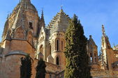 Towers of the old cathedral. Salamanca. Spain. — Stock Photo