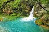 Urederra River. Navarra. Spain. — Stock Photo