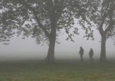 Zombies in the fog — Stock Photo