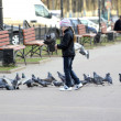 Girl five years feeds pigeons — Stock Photo #39628413