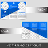 Tri-fold corporate business brochure — Stock Vector