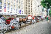 Horse Carriage, New York City — Stock Photo