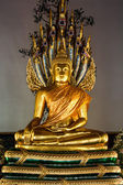 Buddha and Naga — Photo