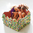 Stock Photo: Barbie dolls in box