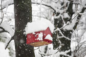 Red tree house for birds in winter — Stock Photo