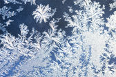 Frostiga mönster — Stockfoto