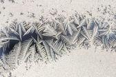Mrazivý vzorek — Stock fotografie