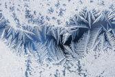 Frozen icy texture — Stock Photo