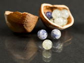 Hazelnut shell with small gemstones — Stock fotografie