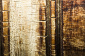 Wood texture with sculpted pattern — Stock Photo