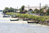Danube Delta landscape — Stock Photo