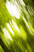 Defocused green lights background — Stock Photo
