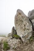 Landscape from Bucegi Mountains — Stock Photo