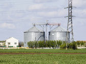 Rural landscape with wheat field and silo — Stock Photo