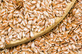 семена льна текстуры — Стоковое фото