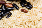 Paddy rice and beans texture — Stock Photo