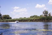 Danube Delta landscape with boat — Stock Photo