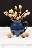 Chestnut buds in a blue ceramic pot and walnuts — Stock Photo