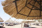 Straw umbrellas on a sandy beach in Egypt — ストック写真