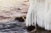 Sea shore in ice — Stock Photo