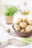 Pommes de terre dans un bol de l'argile — Photo