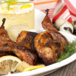 Roasted quail on white plate — Stock Photo